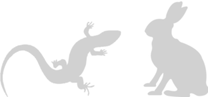 nager-exoten-icon